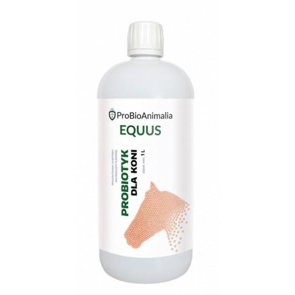 Probiotyk dla koni - 1L