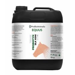 Probiotyk dla koni - 5L